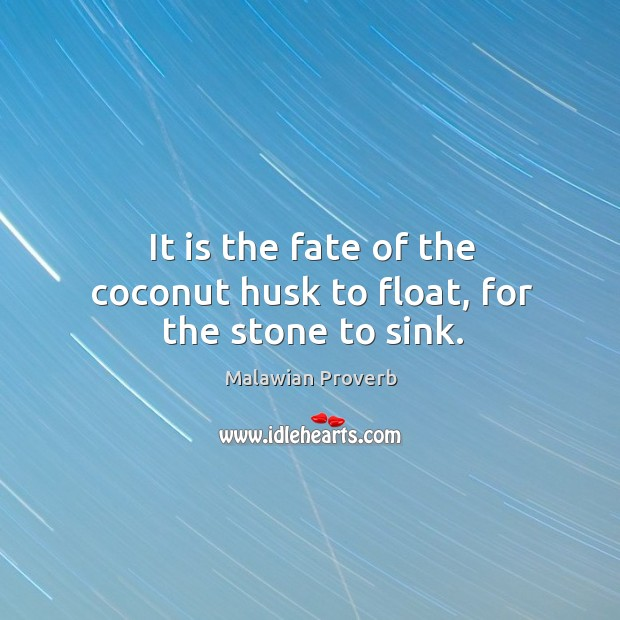 It is the fate of the coconut husk to float, for the stone to sink. Malawian Proverbs Image