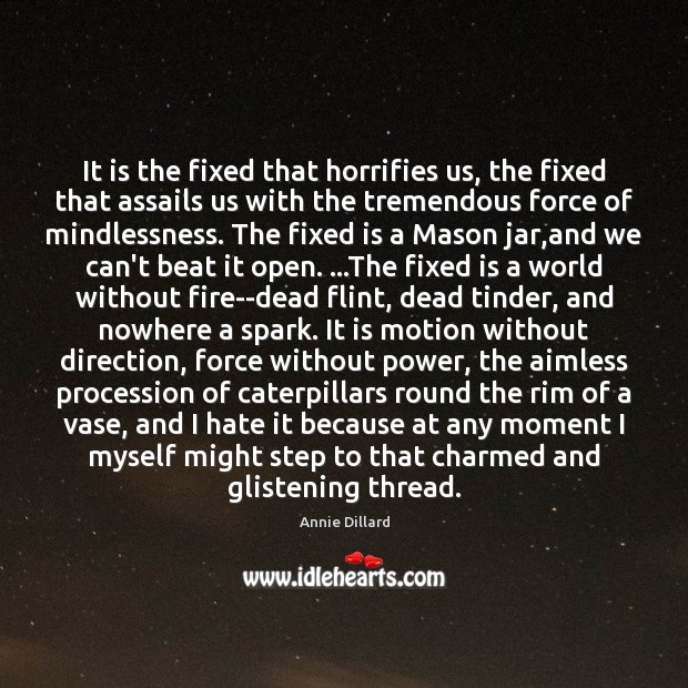 It is the fixed that horrifies us, the fixed that assails us Image