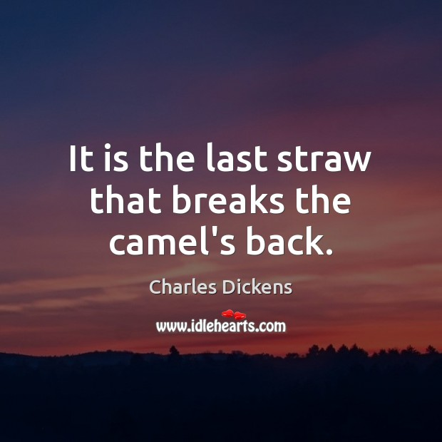 It is the last straw that breaks the camel's back. Charles Dickens Picture Quote