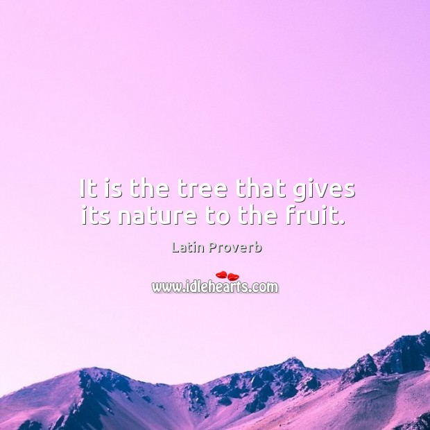 It is the tree that gives its nature to the fruit. Image