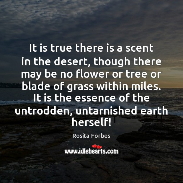 It is true there is a scent in the desert, though there Image