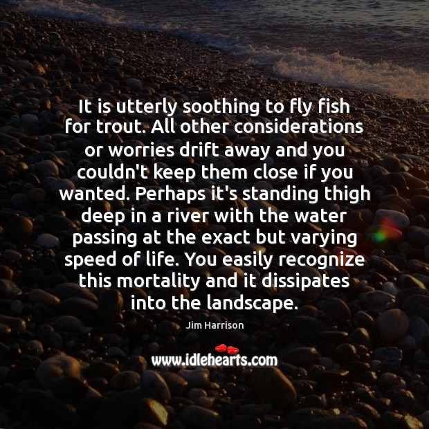 It is utterly soothing to fly fish for trout. All other considerations Jim Harrison Picture Quote