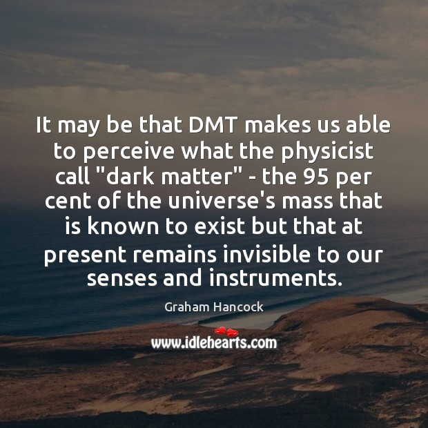 Image, It may be that DMT makes us able to perceive what the