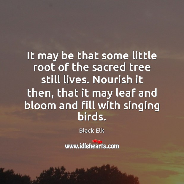 It may be that some little root of the sacred tree still Image