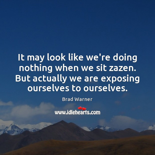 It may look like we're doing nothing when we sit zazen. But Brad Warner Picture Quote