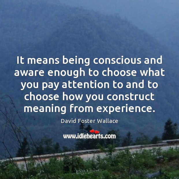 It means being conscious and aware enough to choose what you pay David Foster Wallace Picture Quote