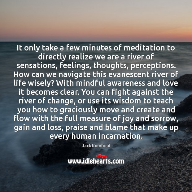 Image, It only take a few minutes of meditation to directly realize we