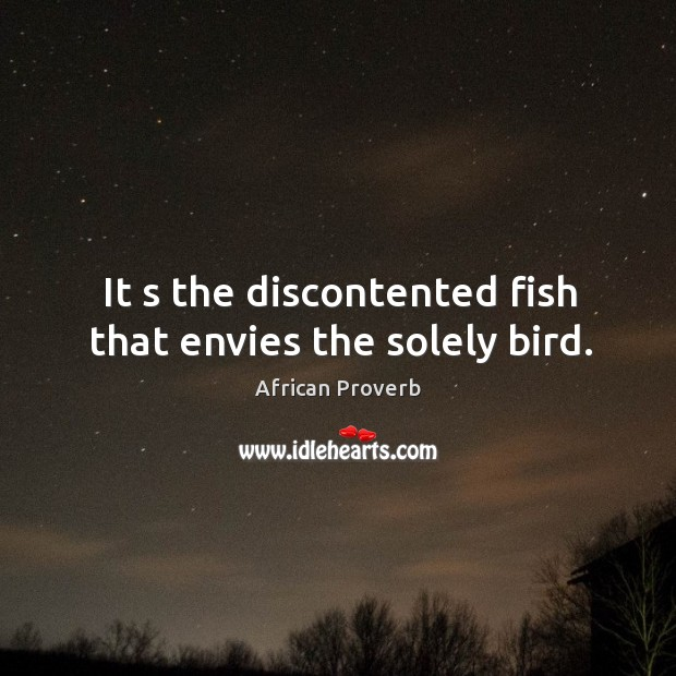 Image, It s the discontented fish that envies the solely bird.
