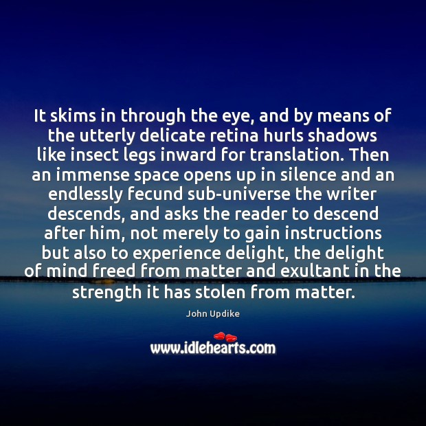 It skims in through the eye, and by means of the utterly John Updike Picture Quote