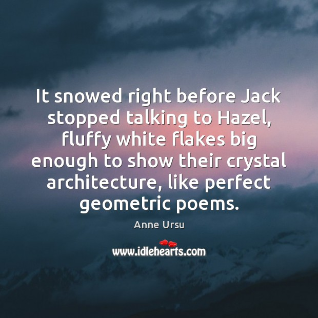 It snowed right before Jack stopped talking to Hazel, fluffy white flakes Anne Ursu Picture Quote