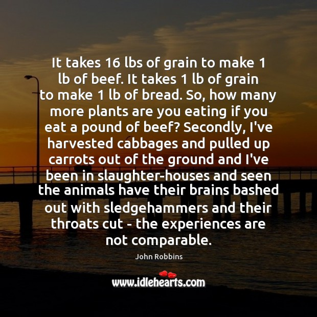 It takes 16 lbs of grain to make 1 lb of beef. It takes 1 John Robbins Picture Quote