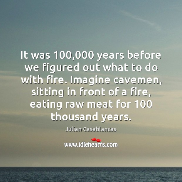 It was 100,000 years before we figured out what to do with fire. Julian Casablancas Picture Quote