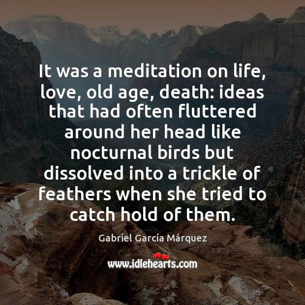 It was a meditation on life, love, old age, death: ideas that Gabriel García Márquez Picture Quote