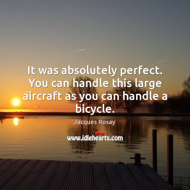 It was absolutely perfect. You can handle this large aircraft as you can handle a bicycle. Image