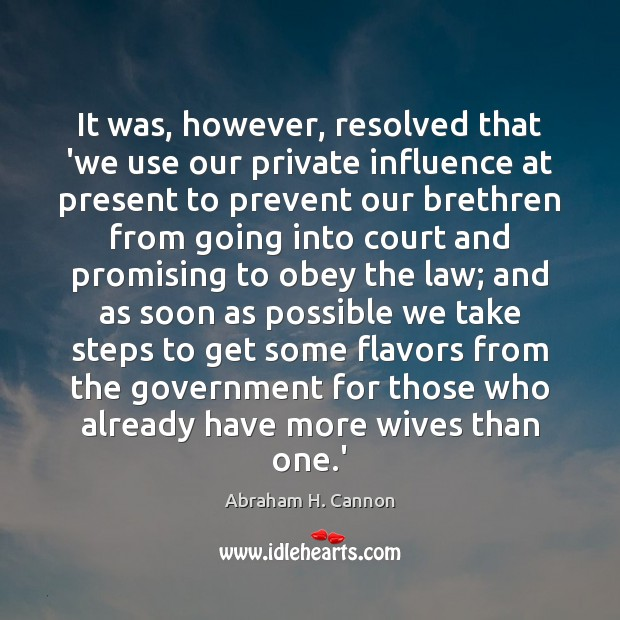 It was, however, resolved that 'we use our private influence at present Government Quotes Image