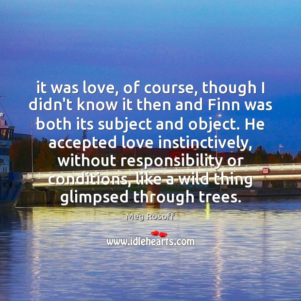 It was love, of course, though I didn't know it then and Meg Rosoff Picture Quote