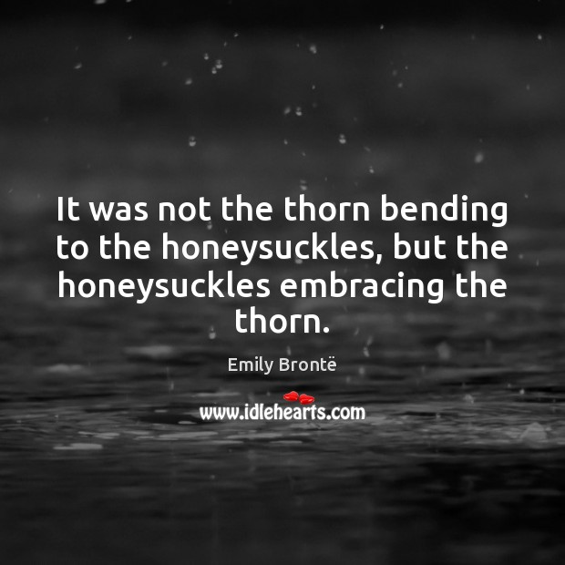 It was not the thorn bending to the honeysuckles, but the honeysuckles Emily Brontë Picture Quote