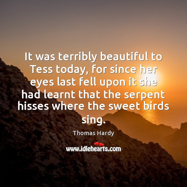 It was terribly beautiful to Tess today, for since her eyes last Thomas Hardy Picture Quote