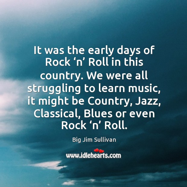 It was the early days of rock 'n' roll in this country. We were all struggling to learn music Big Jim Sullivan Picture Quote