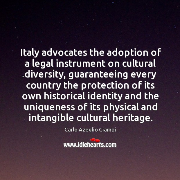 Image, Italy advocates the adoption of a legal instrument on cultural diversity, guaranteeing