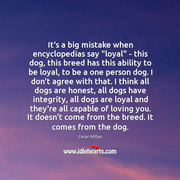 """It's a big mistake when encyclopedias say """"loyal"""" – this dog, this Image"""