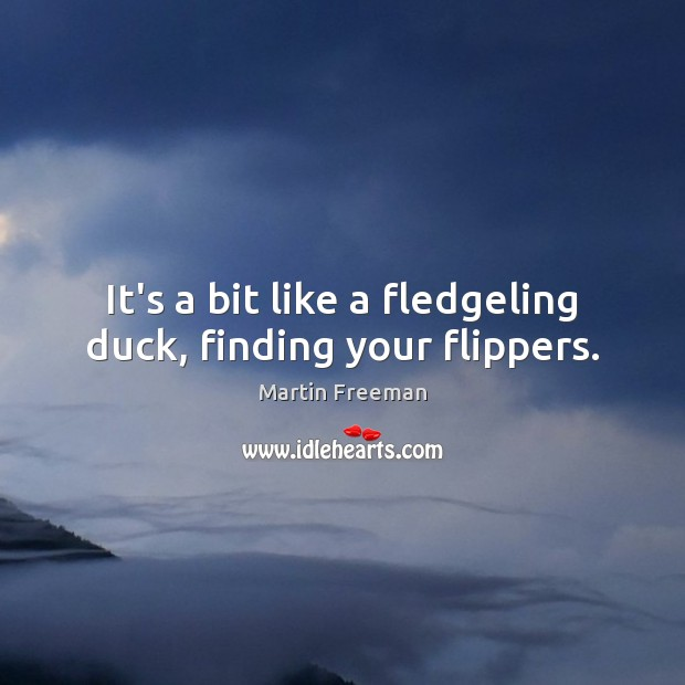 It's a bit like a fledgeling duck, finding your flippers. Martin Freeman Picture Quote