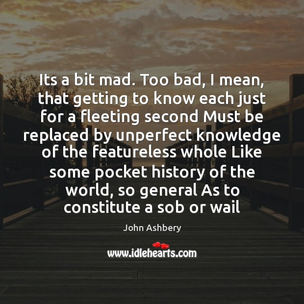 Its a bit mad. Too bad, I mean, that getting to know John Ashbery Picture Quote