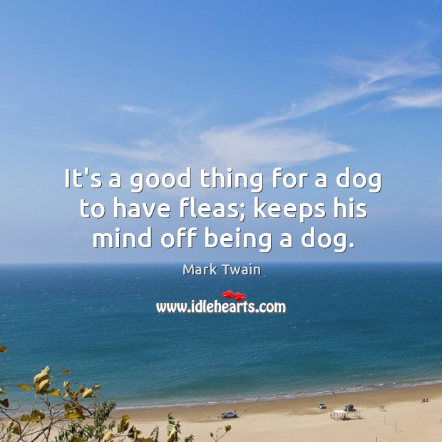 It's a good thing for a dog to have fleas; keeps his mind off being a dog. Image