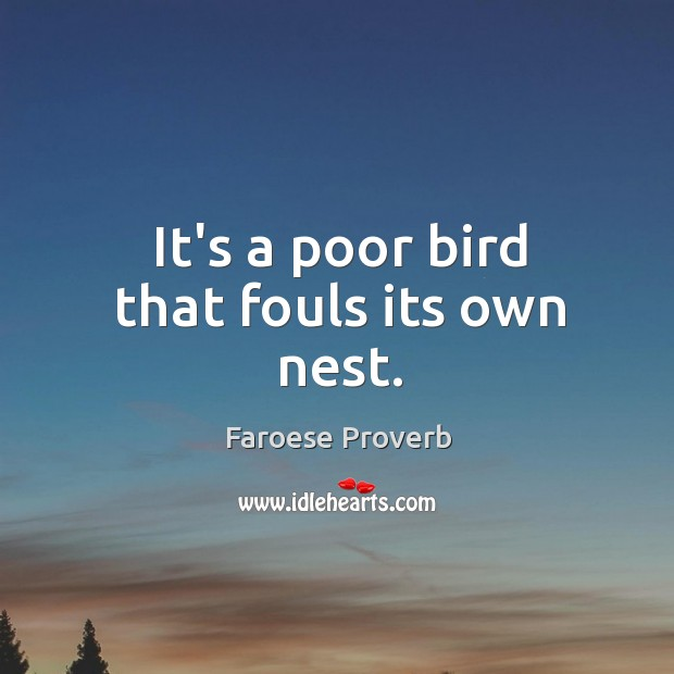 It's a poor bird that fouls its own nest. Faroese Proverbs Image