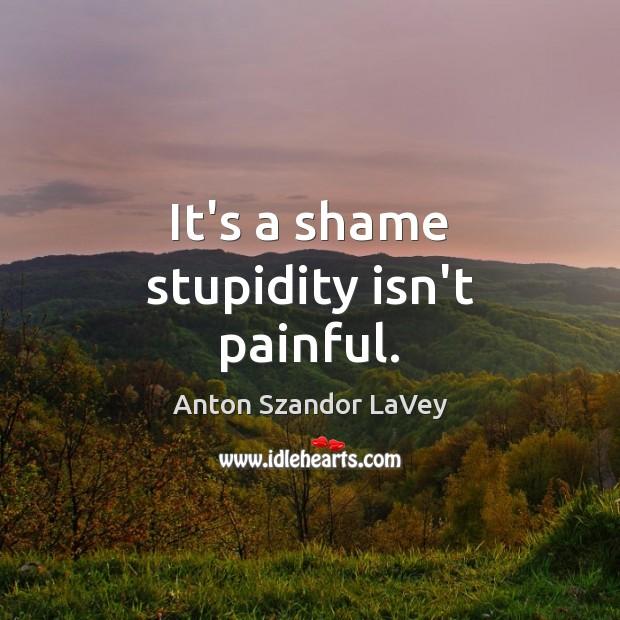 It's a shame stupidity isn't painful. Image
