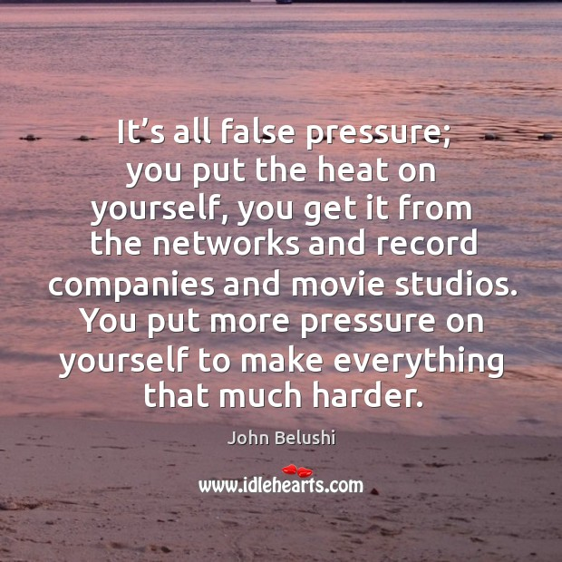 It's all false pressure; you put the heat on yourself, you get it from the networks and John Belushi Picture Quote