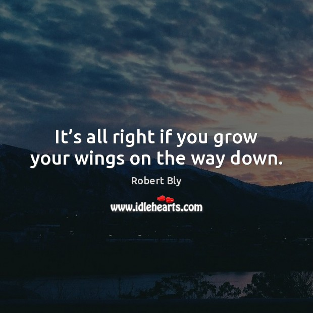 It's all right if you grow your wings on the way down. Image