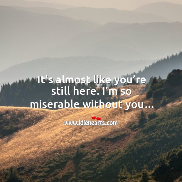 It's almost like you're still here. I'm so miserable without you… Image