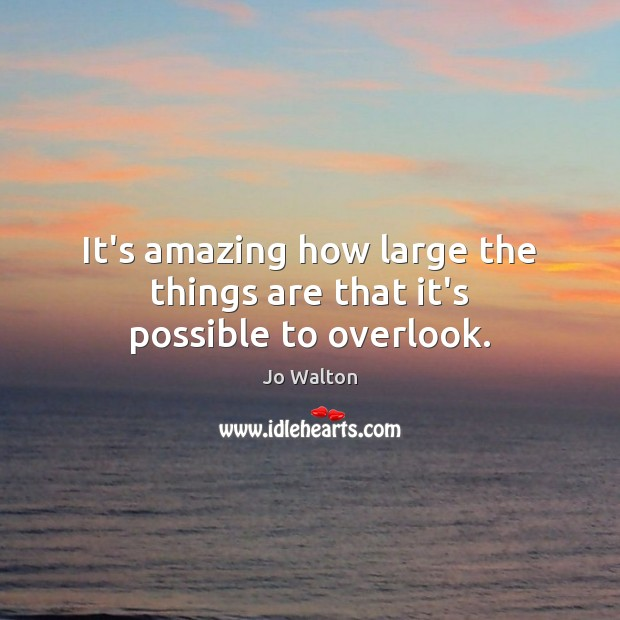 It's amazing how large the things are that it's possible to overlook. Image