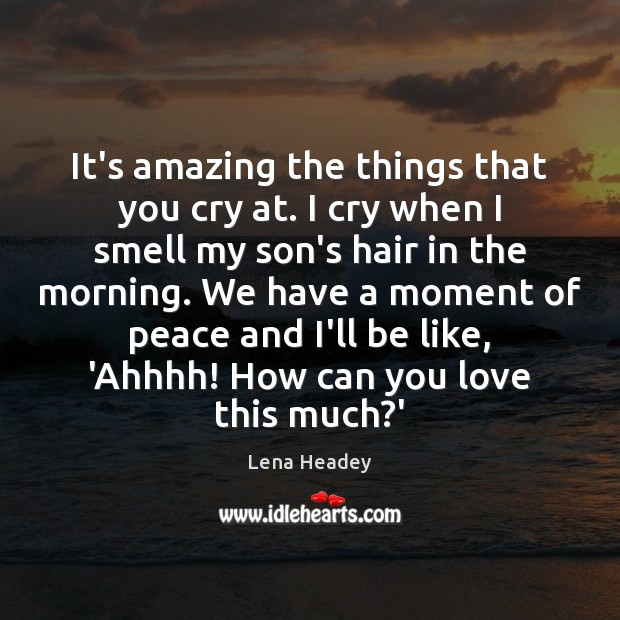 It's amazing the things that you cry at. I cry when I Lena Headey Picture Quote