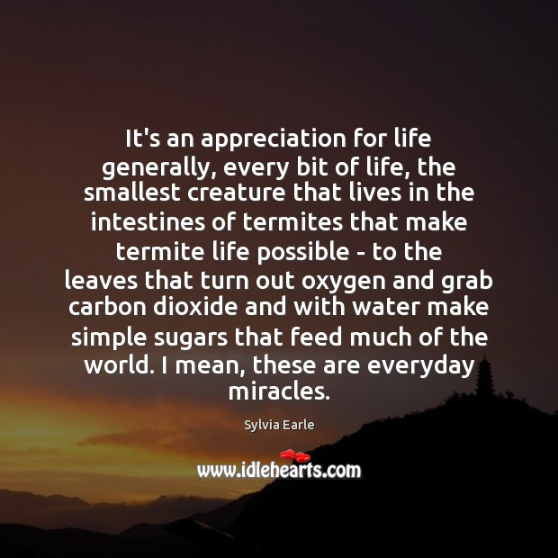 Image, It's an appreciation for life generally, every bit of life, the smallest