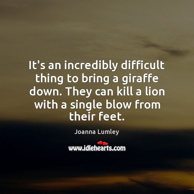 It's an incredibly difficult thing to bring a giraffe down. They can Joanna Lumley Picture Quote