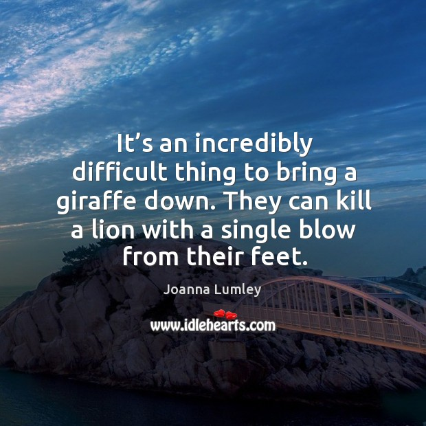 It's an incredibly difficult thing to bring a giraffe down. They can kill a lion with a single blow from their feet. Joanna Lumley Picture Quote
