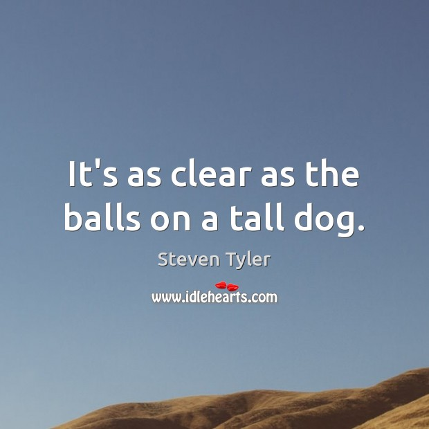 It's as clear as the balls on a tall dog. Steven Tyler Picture Quote