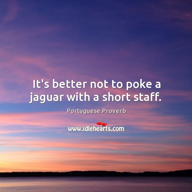 Image, It's better not to poke a jaguar with a short staff.