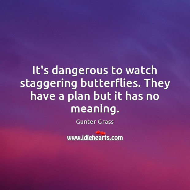 It's dangerous to watch staggering butterflies. They have a plan but it has no meaning. Gunter Grass Picture Quote