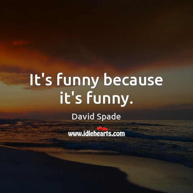 It's funny because it's funny. David Spade Picture Quote
