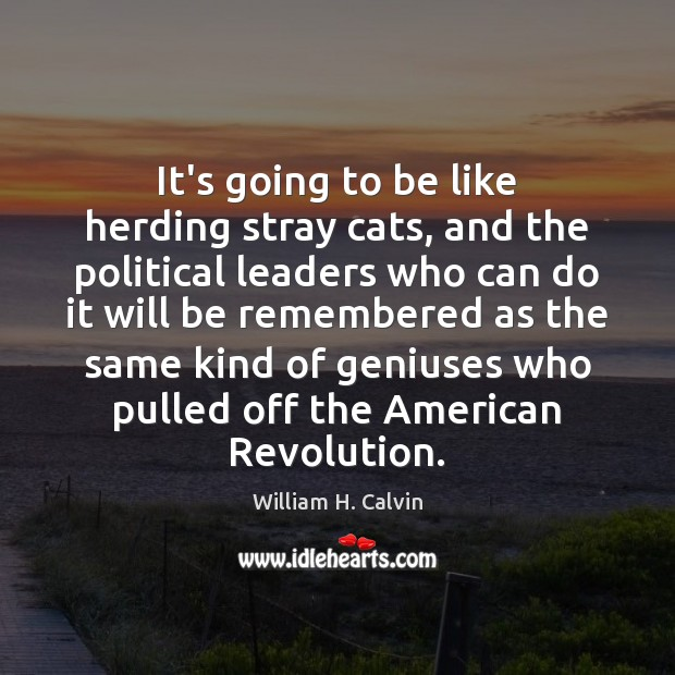 It's going to be like herding stray cats, and the political leaders Image
