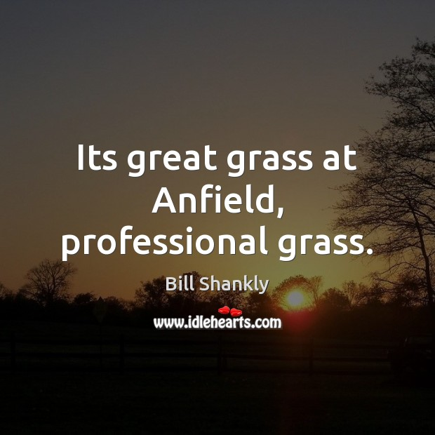 Image, Its great grass at Anfield, professional grass.