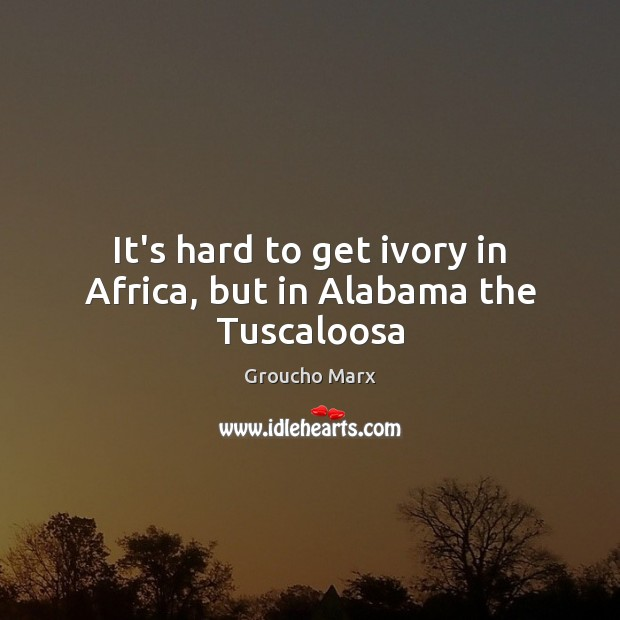 It's hard to get ivory in Africa, but in Alabama the Tuscaloosa Image