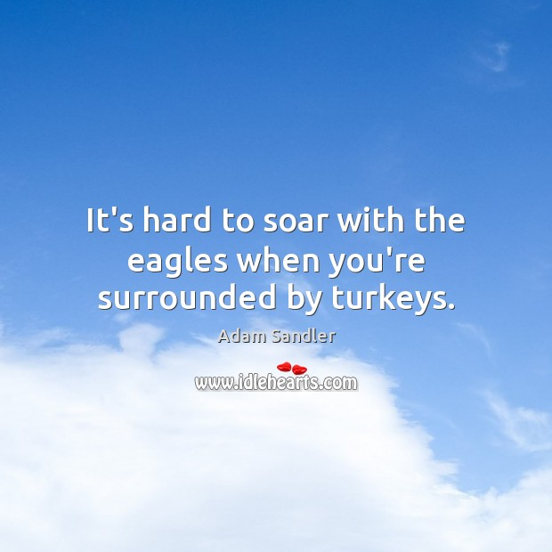 It's hard to soar with the eagles when you're surrounded by turkeys. Adam Sandler Picture Quote