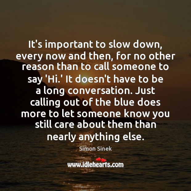 It's important to slow down, every now and then, for no other Simon Sinek Picture Quote