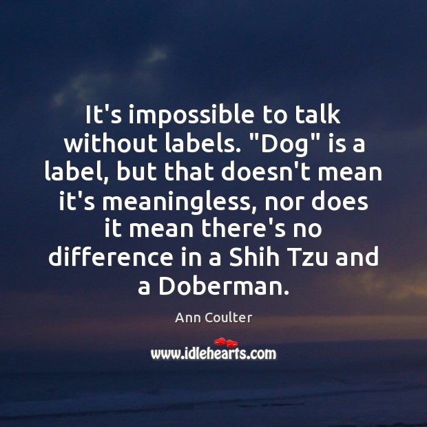 """It's impossible to talk without labels. """"Dog"""" is a label, but that Image"""