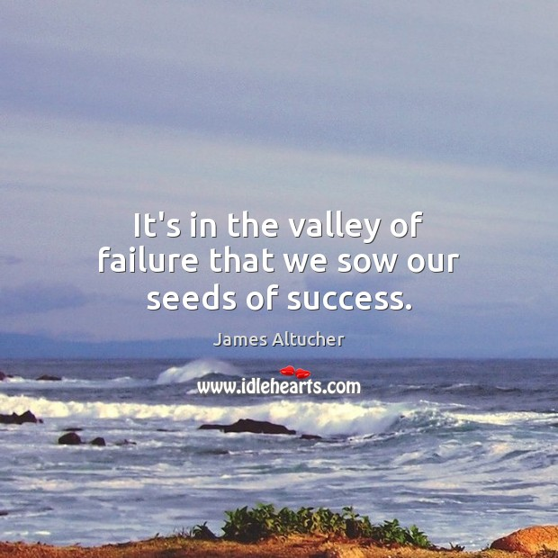 It's in the valley of failure that we sow our seeds of success. James Altucher Picture Quote