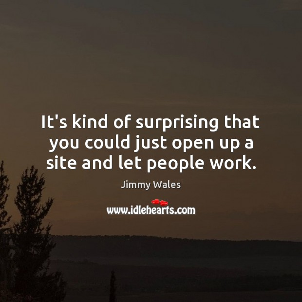 It's kind of surprising that you could just open up a site and let people work. Jimmy Wales Picture Quote